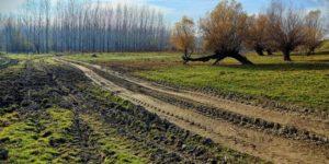 1.jesen-ritovi-seoski-putevi-ravnica-vojvodina_660x330